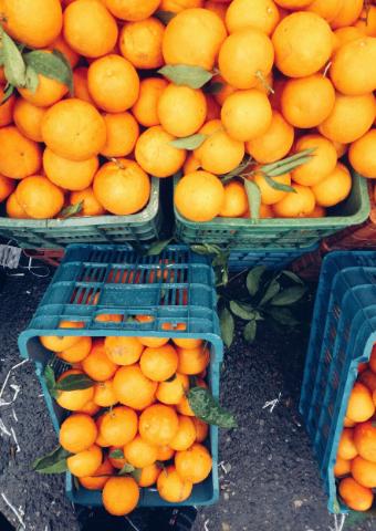 אובדן מזון: כיצד תפסיקו לזרוק לפח 3,200 שקלים בכל שנה?